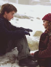 Harry and Hermione 3rd Year